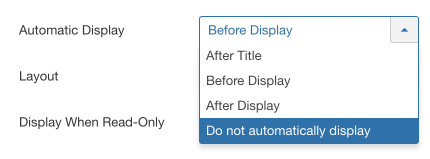 Excerpt automatic display option